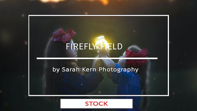 Firefly Field by Sarah Kern Photograp...