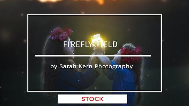 Firefly Field Teaser | SK | August 2020