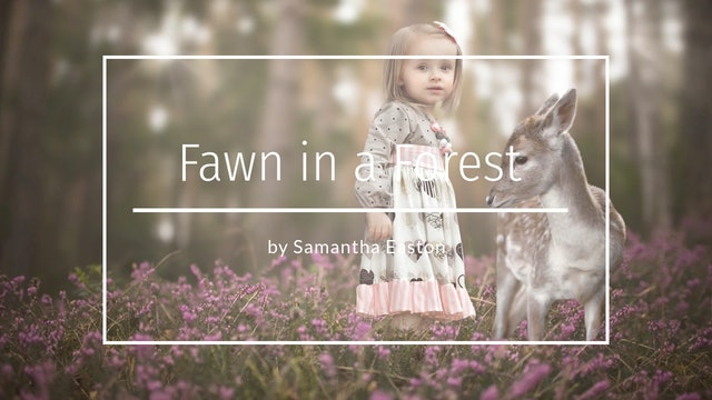 Fawn in a Forest, A Simple Composite by Samantha Easton - May 2020