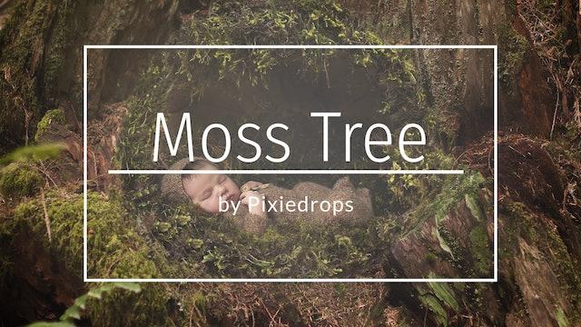 Newborn Moss tutorial by Pixiedrops