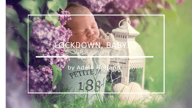 Lockdown, Baby! By Adele Holland May ...