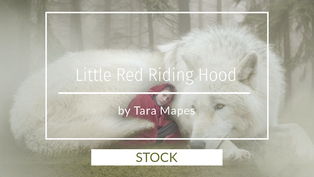 Stock Images for Little Red Riding Hood by Tara Mapes