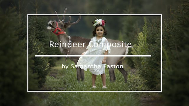 Reindeer Composite By Samantha Easton...