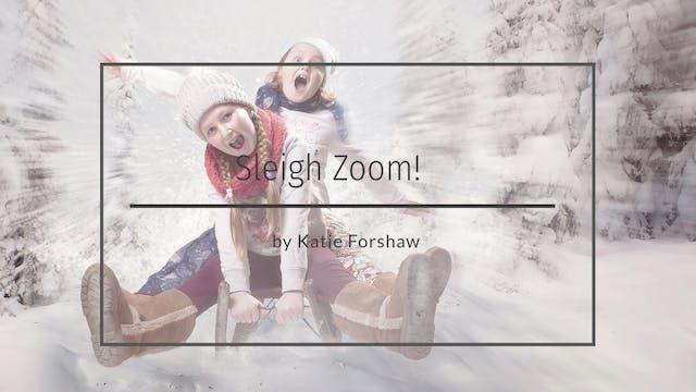Sleigh zoom video tutorial