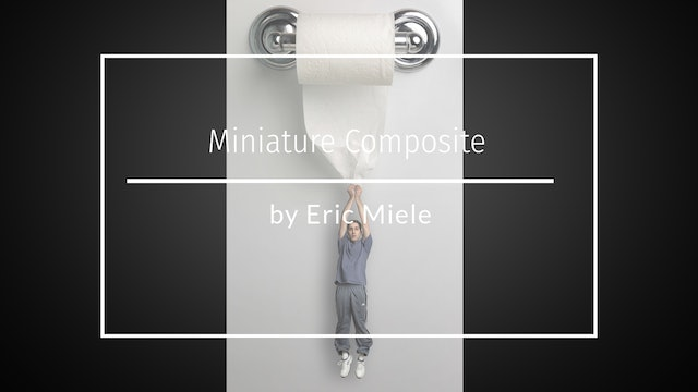 Miniature Composite - Toilet Roll Hanging by Eric Miele