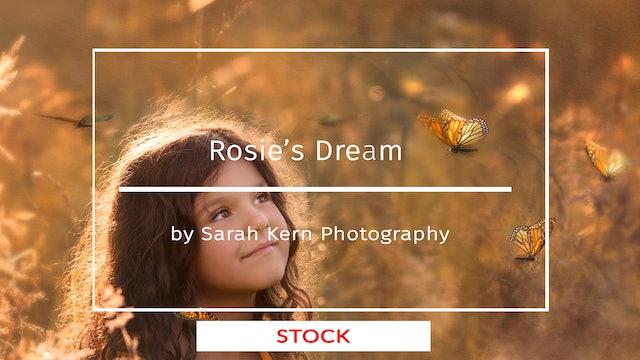 Rosie's Dream by Sarah Kern   SEPTEMBER 2020