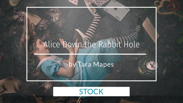 Stock for Down the Rabbit Hole Tutorial by Tara Mapes