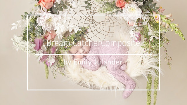 Newborn Dream Catcher Composite by Emily Julander - March 2020