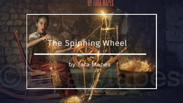 The Spinning Wheel Teaser by Tara Mapes