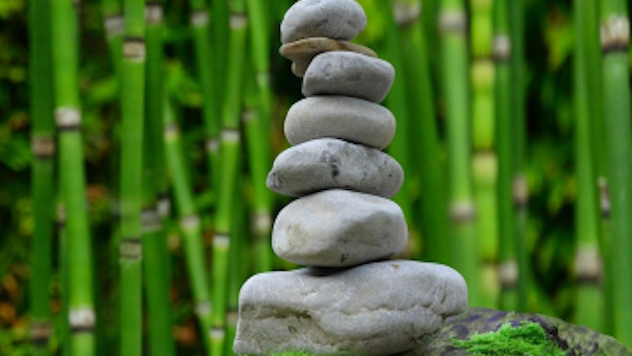 Mindfulness in Meetings