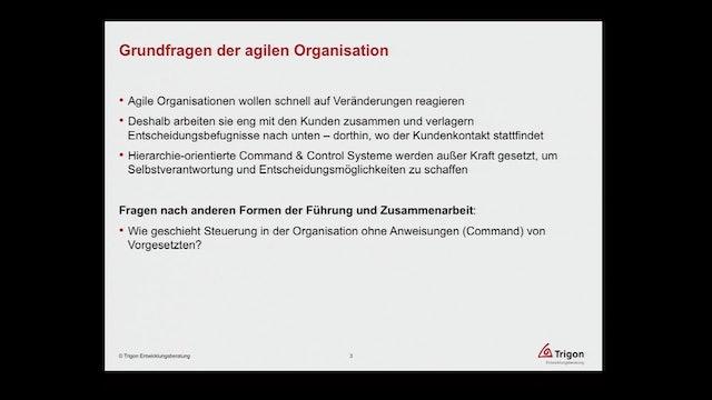 Agile Transformation - Wie die Kultur in Organisationen verändert werden kann