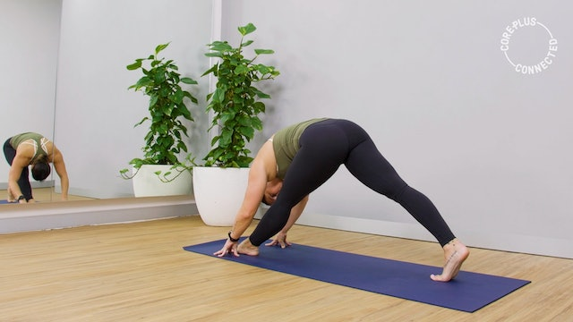Hamstring Lengthening Vinyasa Flow with Tarryn