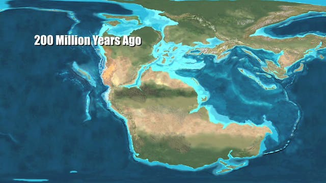 Earth 100 Million Years from Now