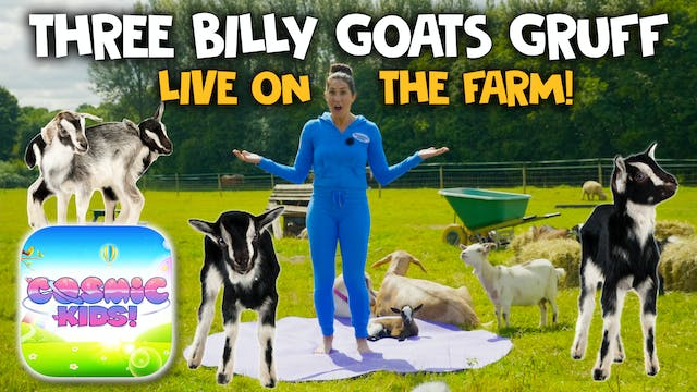 Yoga With Goats! 3 Billy Goats Gruff ...