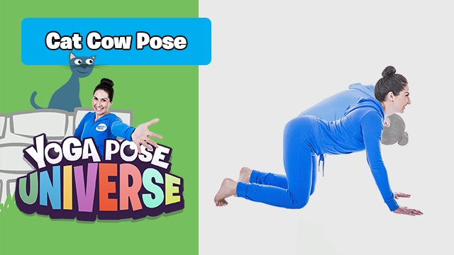 Yoga Pose Universe | Cat Cow Pose