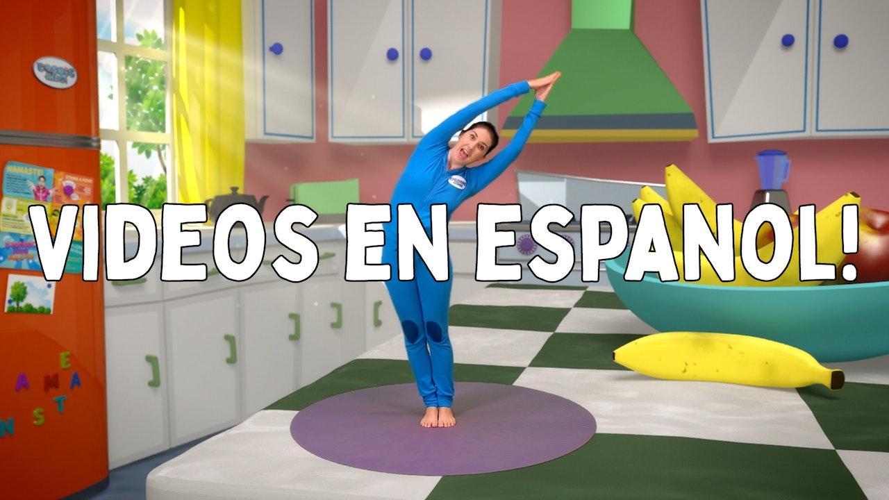 VIDEOS EN ESPAÑOL / Videos in Spanish