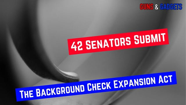 S42  Background Check Expansion Act