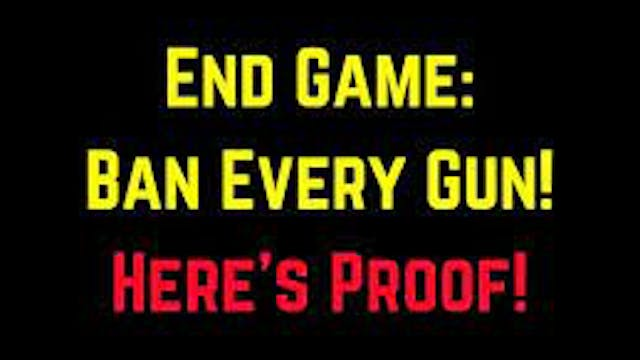 END GAME Ban All Guns Heres Proof