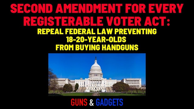 Second Amendment for Every Registerable Voter Act