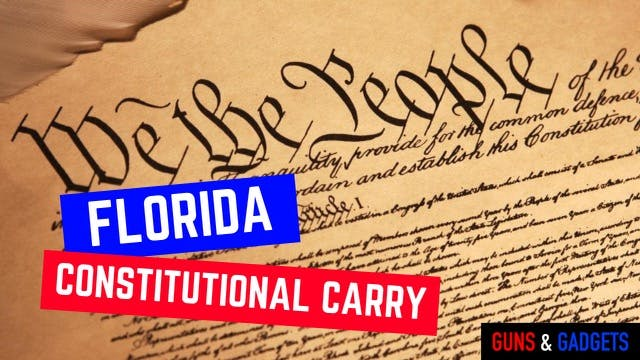 Constitutional Carry Bill Pre-Filed I...