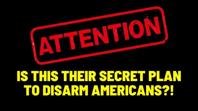 Is This Their Secret Plan To Disarm A...