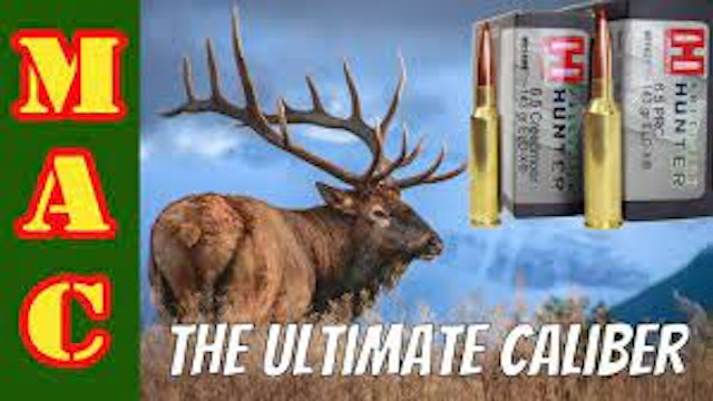 Search for the ULTIMATE hunting caliber - 6.5 PRC vs. 6.5 Creedmoor
