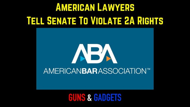 American Bar Association Tells Senate...