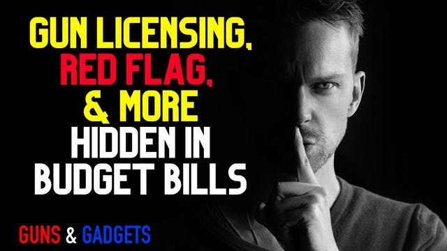Gun Licensing Red Flag  MORE Hidden i...