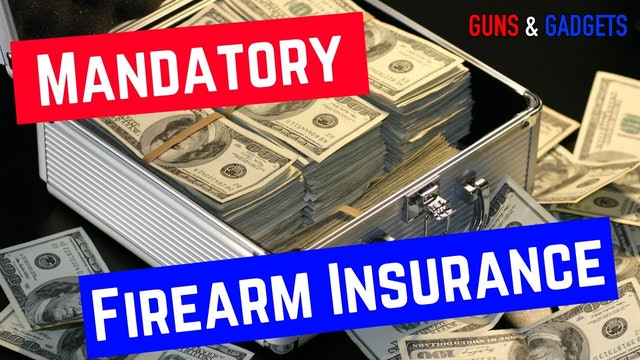 HR1004 | Firearms Risk Protection Act = Mandatory Firearm Insurance