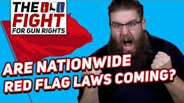 DOJ ISSUES RED FLAG LAW TEMPLATE - Fi...