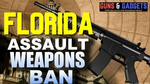Florida's New Assault Weapons Ban Bil...