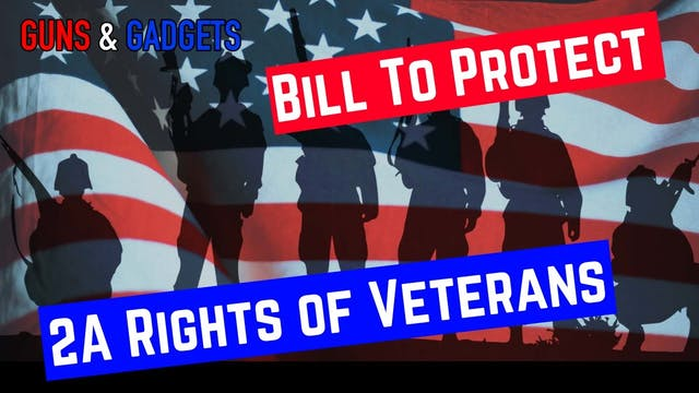 Veterans 2nd Amendment Protection Act