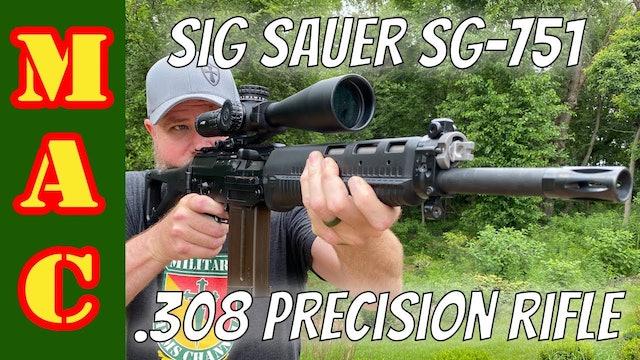 Sig Sauer SG751 SAPR Accuracy Test  Precision rifle or battle rifle