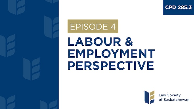 [E4] Labour & Employment Perspective (CPD 285.4)