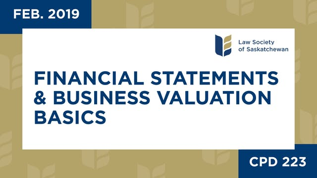 CPD 223 - Financial Statements & Busi...