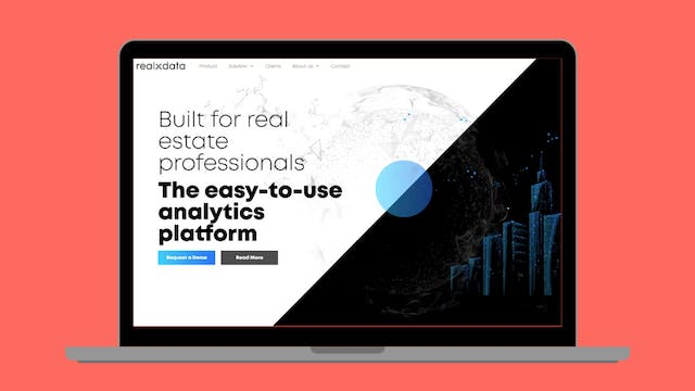 Virtual Demo Day - realxdata