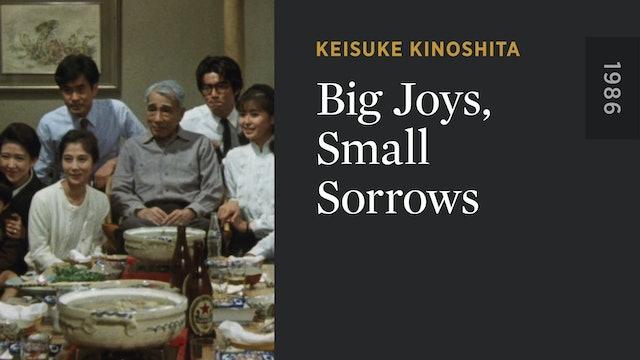 Big Joys, Small Sorrows