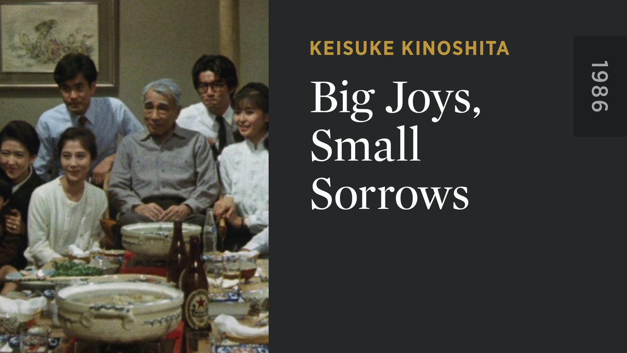 Big Joys, Small Sorrows