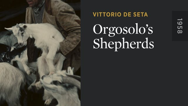 Orgosolo's Shepherds