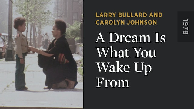 A Dream Is What You Wake Up From