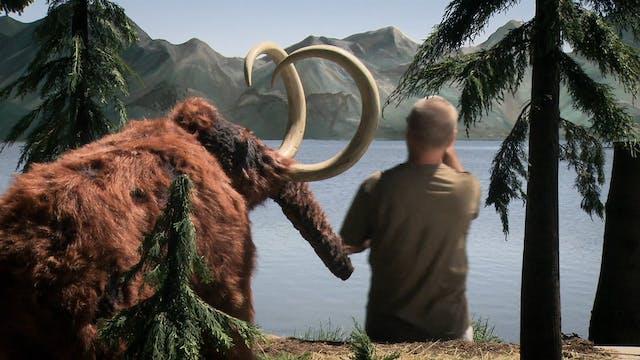 Film Adventurer Karel Zeman Trailer