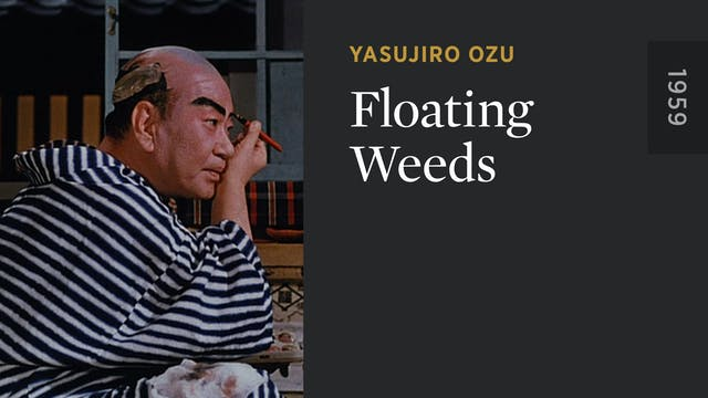 Floating Weeds