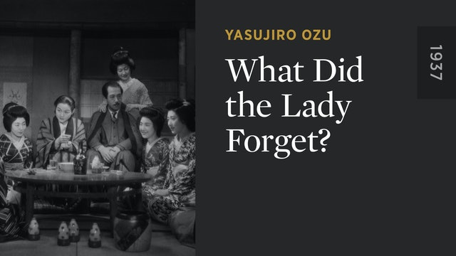 What Did the Lady Forget?