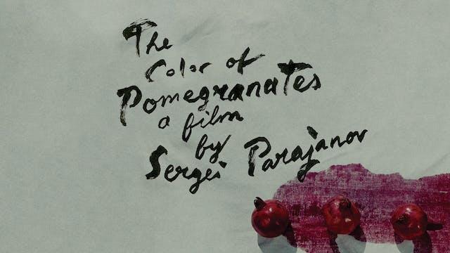 THE COLOR OF POMEGRANATES Edition Intro