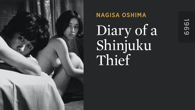 Diary of a Shinjuku Thief