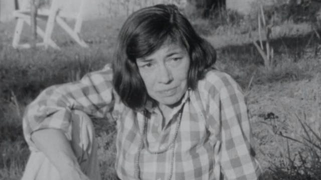 """Variances"": Patricia Highsmith, 1971"