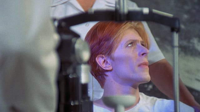 THE MAN WHO FELL TO EARTH Commentary