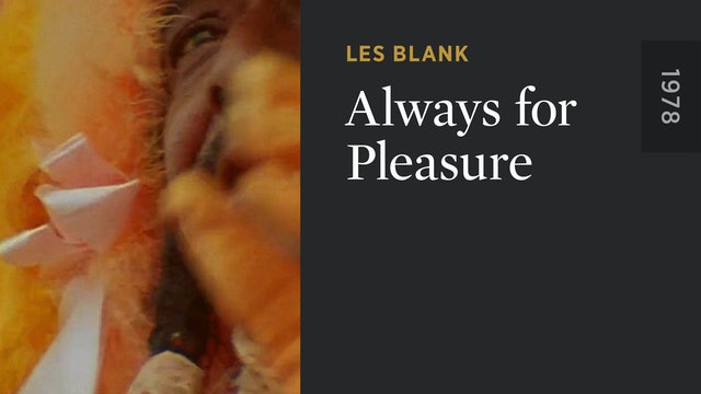 Always for Pleasure