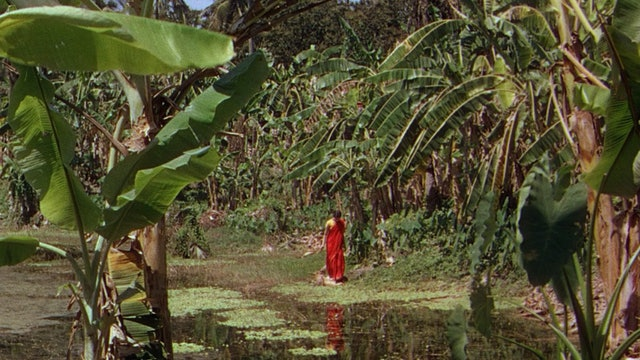 Jean Renoir: A Passage Through India