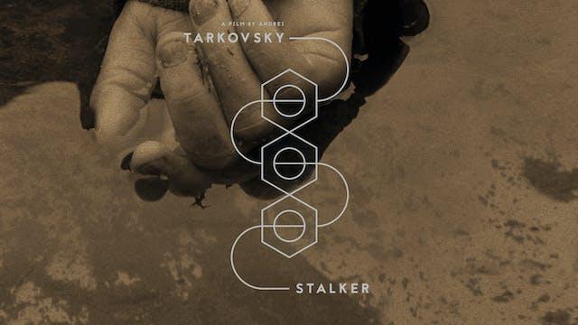 STALKER Edition Intro